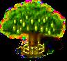 Affenbrotbaum xxl.png