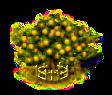 Affenorangenbaum xxl.png