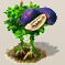 Akebienfrucht.png
