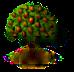 Anjoubirnenbaum.png