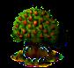 Anjoubirnenbaum xl.png