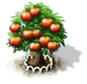 apple_1_Icon.png