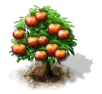 apple_Icon.png