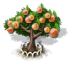 apricot_upgrade_1_Icon.png