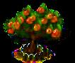 Aprikosenbaum xl.png