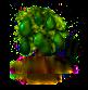 avocado_Icon.png