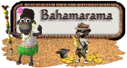 bahama banner.png