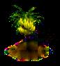 Bananenbaum.png