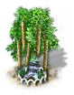 birch_upgrade_1_Icon.png