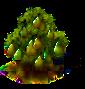 Birnbaum.png