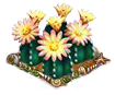 bishopshatcactus.png
