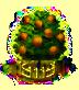 Bitternussbaum XXL.png