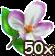 Blumenblüte 50.png