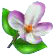 Blumenblüte.png
