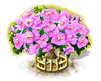 bougainvillea_upgrade_2_Icon.png