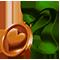 breedingfeb2018_dropitem_bronzemedal_icon_big[1].png