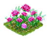 carnation_Icon.png