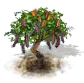 carob_upgrade_0_Icon.png