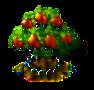 Cashewbaum xl.png