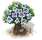 catalpa_Icon.png