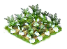 celery_Icon.png