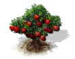 cherry_Icon.png