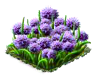 chives.png