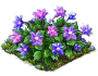 clematis_Icon.png