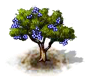 cork_upgrade_0_Icon.png