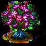 desertrose_upgrade_0.png