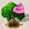 Drillingsblüte.png