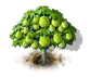 durian_upgrade_0_Icon.png