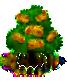 Edelkastanienbaum xl.png