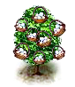 eggtree_Icon.png