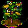 Eukalyptusbaum.png
