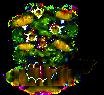 Eukalyptusbaum xl.png