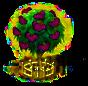 Ficus xxl.png