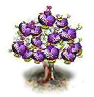 flavortree_Icon.png