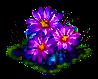 flowercactus.png