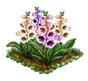 foxglove.png