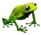 frog[1].png