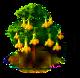 Gelber Trompetenbaum.png