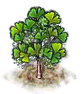 ginkgo_upgrade_0_Icon.png