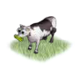 givercow_big.png