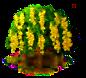 Goldregenbaum.png
