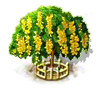 Goldregenbaum xxl.png
