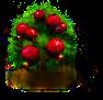 Granatapfel-Baum.png