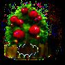 Granatapfel-Baum xl.png