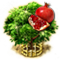 Granatapfelbaum-XXL.png