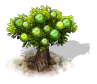 guava_Icon.png